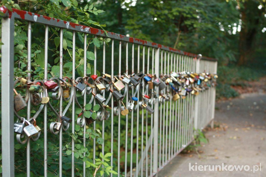 kłódki zachochanych lubniewice Park Miłości w Lubniewicach