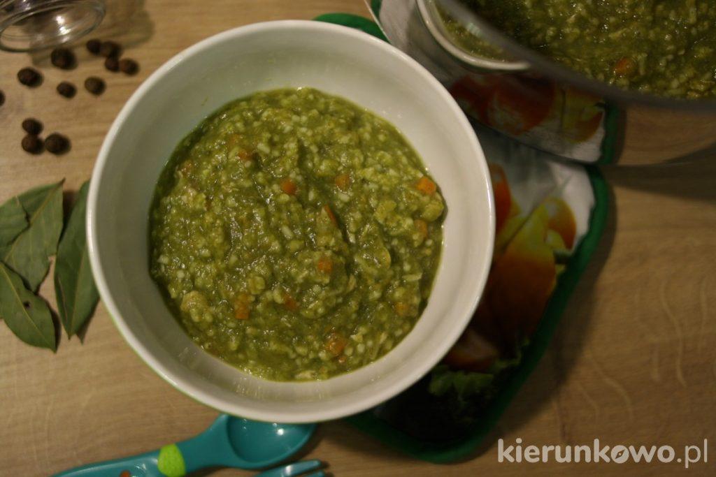 zupa z zielonych warzyw dla dzieci obiad dla rocznego dziecka