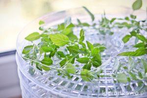 domowe suszone zioła
