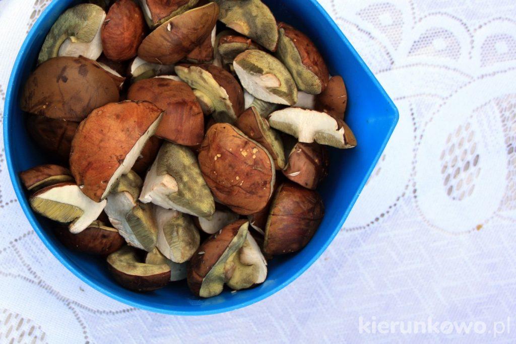 jak przygotować grzyby