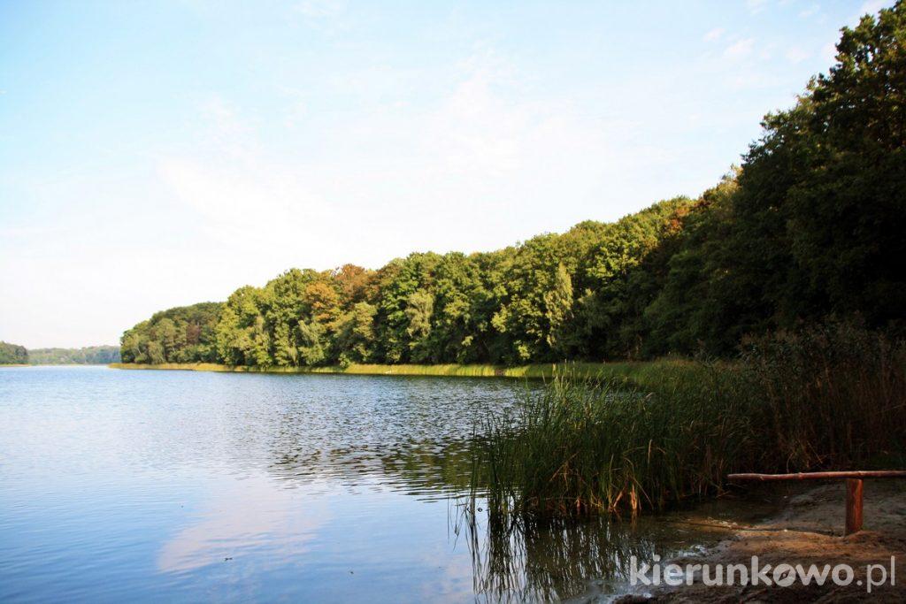 jezioro góreckie wielkopolski park narodowy
