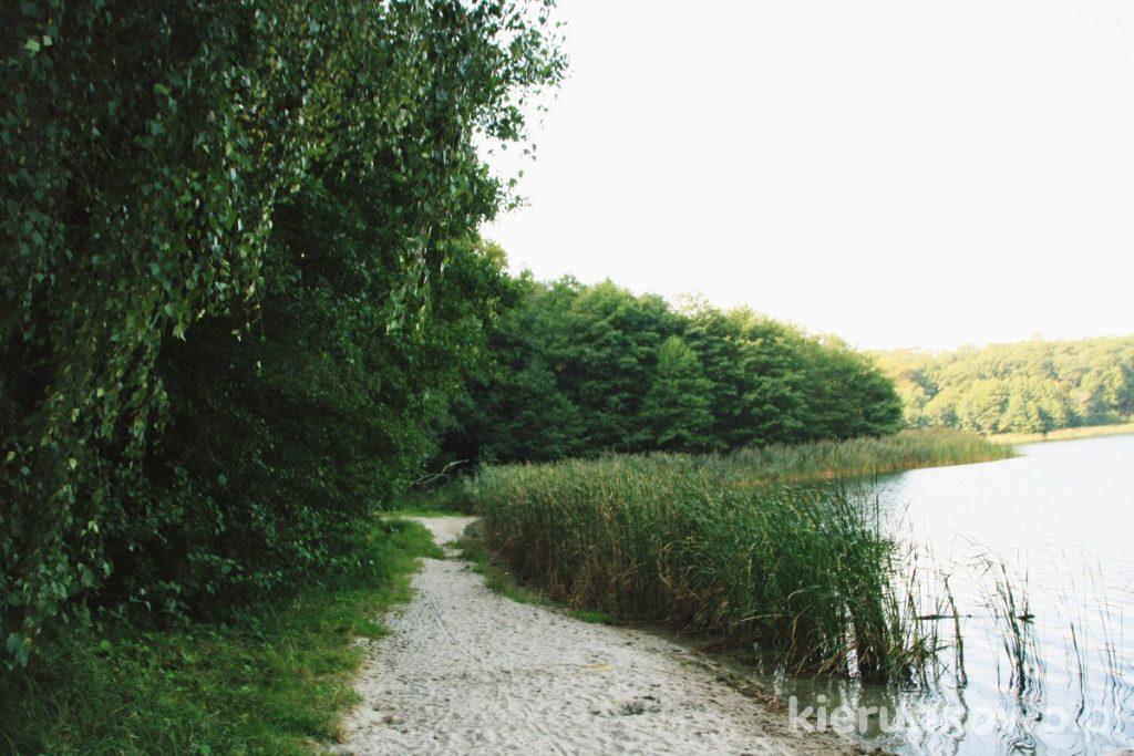 wielkopolski park narodowy dawna plaża nad jeziorem góreckim