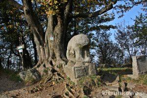 Rzeźby kultowe na Ślęży ślęża niedźwiedż niedzwiedz