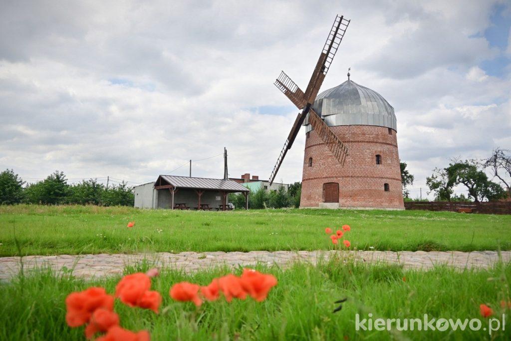 wiatrak holenderski w pyzdrach holender